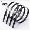 Wuhan MZ Electronic Co.,Ltd | 008613247193001