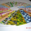 FULIN PLASTIC INDUSTRY JOINT STOCK COMPANY