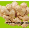 Jining Yufeng International Trade Co., Ltd.