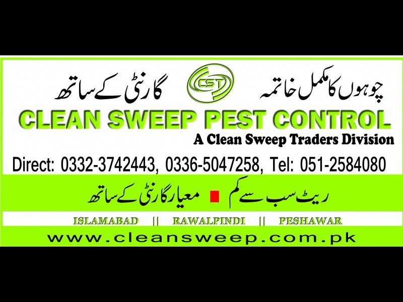 Fumigation Company in Islamabad and Rawalpindi | Rawalpindi
