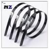 Wuhan MZ Electronic Co.,Ltd | 008613247193001