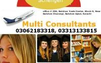 Multi Consultants
